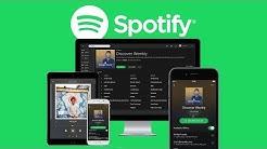 Das Große Spotify (Tutorial) Alles was du wissen musst