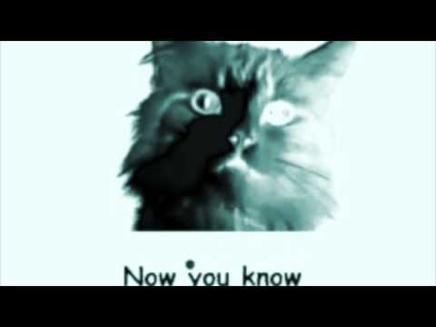 Meow Mix Song (Remix)