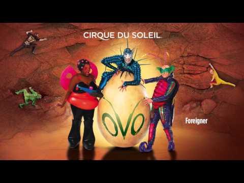 OVO | Cirque du Soleil Soundtrack Album