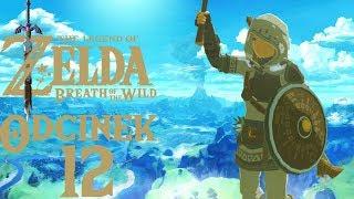 BIAŁY WĘDROWIEC Z NIEBIESKIM PŁOMIENIEM - The Legend of Zelda: Breath of the Wild #12