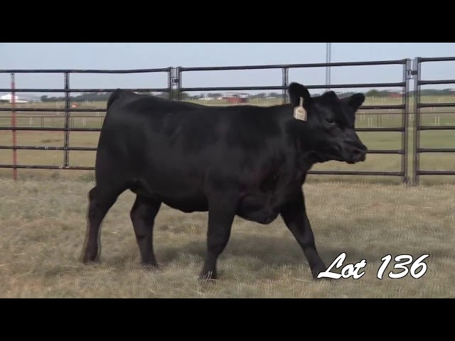 Pollard Farms Lot 136