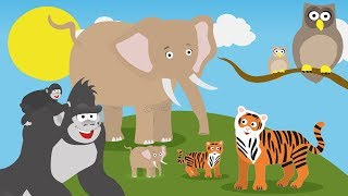Baby Animal Videos For Toddlers | Toddler Fun Learning