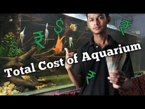 Total Cost of big Aquarium