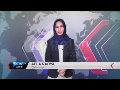 Kabar Aceh online - Kebun Kurma di Aceh Besar