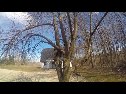 GoPro Hero 4 Silver Raw Footage - Let's check the apple trees!