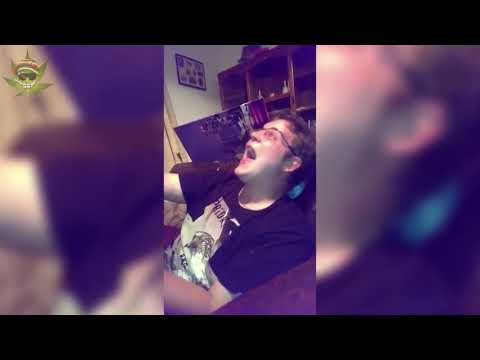 Ultimate Funny Stoner Compilation HD   #THC