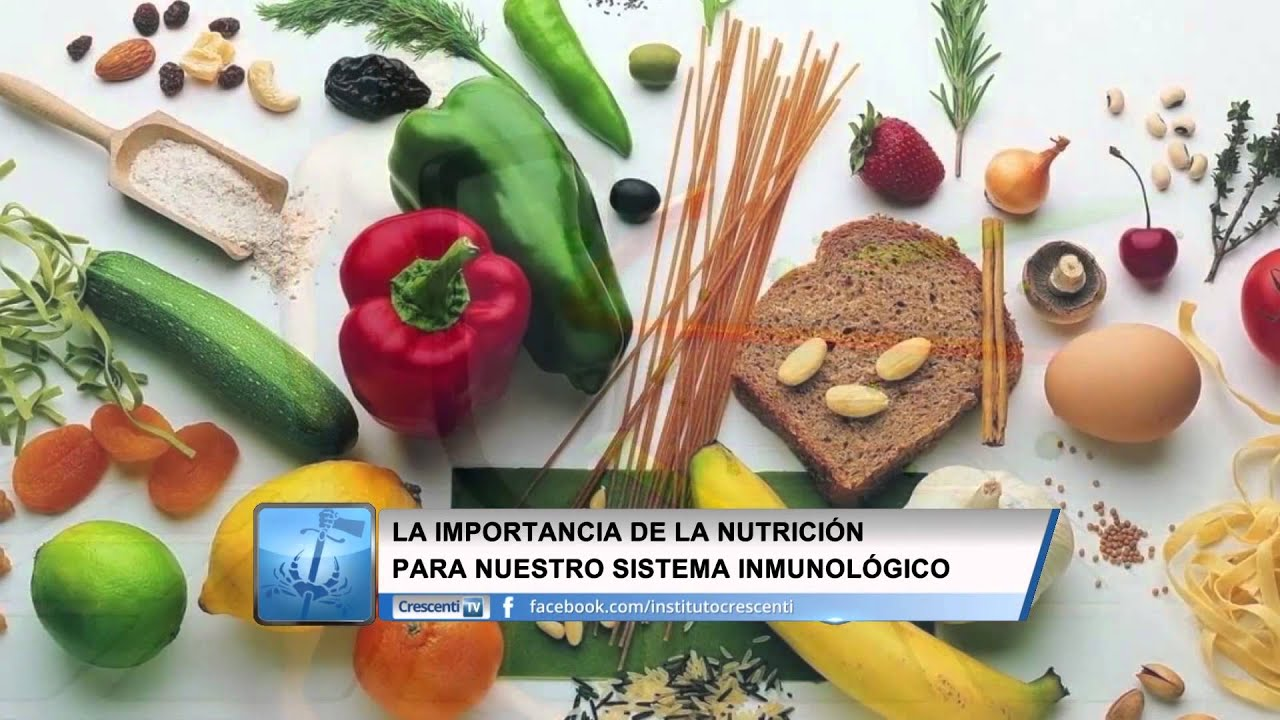 importancia de los alimentos en nuestro cuerpo