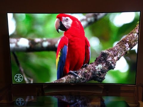 LG 55EG9100 OLED Live Demo and Review