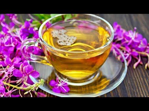 Производство Иван чая как бизнес идея
