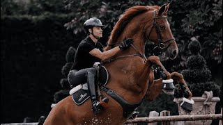 Can't Hold Us || Equestrian Music Video