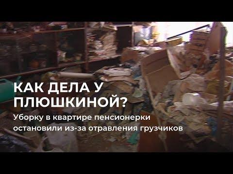 Уборку в квартире пермской Плюшкиной остановили из-за отравления грузчиков