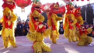 В Китае и еще 130 странах встретили лунный Новый год