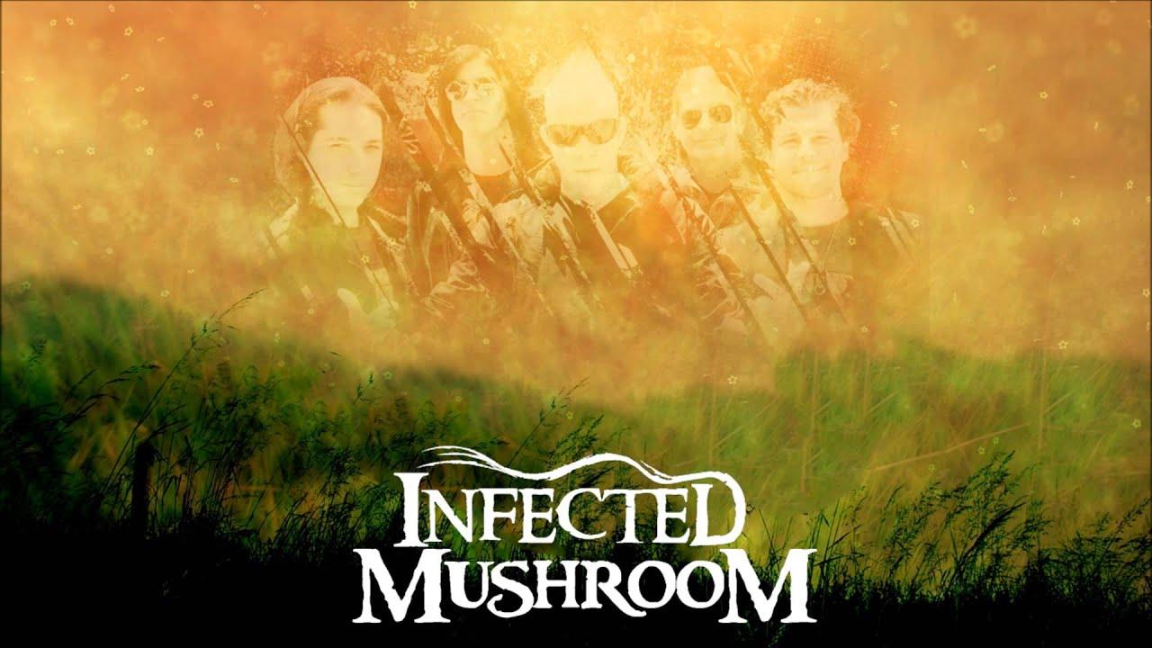 mushroom mambacore infected
