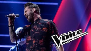 Stig Gustu Larsen – Sign Of The Times | Knockouts | The Voice Norge 2019