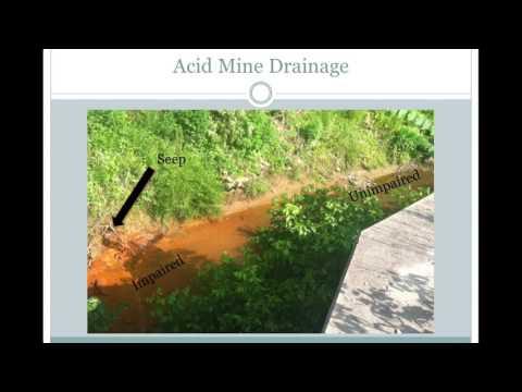 Exploring Acid Mine Drainage