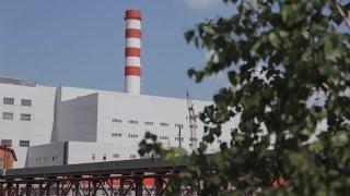 Общественная организация «Зеленый патруль» составила экологический рейтинг субъектов РФ