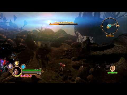 Dungeon Siege 3 last boos battle (hardcore) |