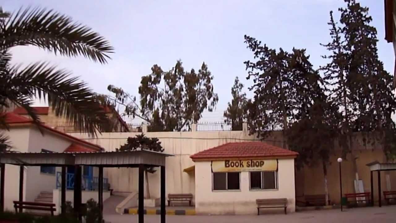 Download Al-Balqa Applied University ( Amman College ) كلية عمان