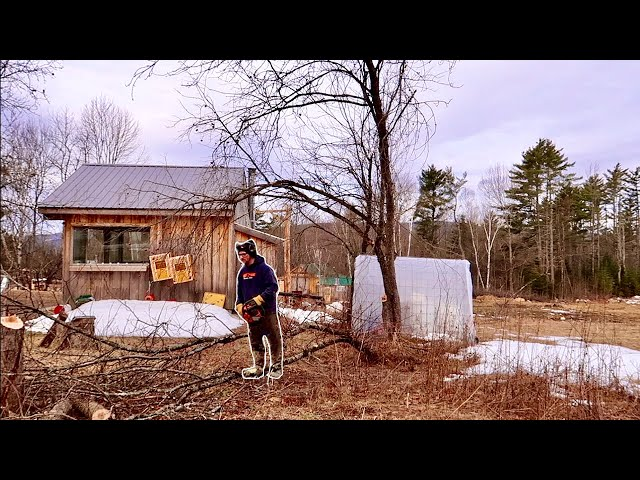 Preparing OUR Homestead to GROW all of our GROCERIES for a YEAR