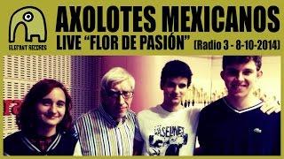 AXOLOTES MEXICANOS - Live