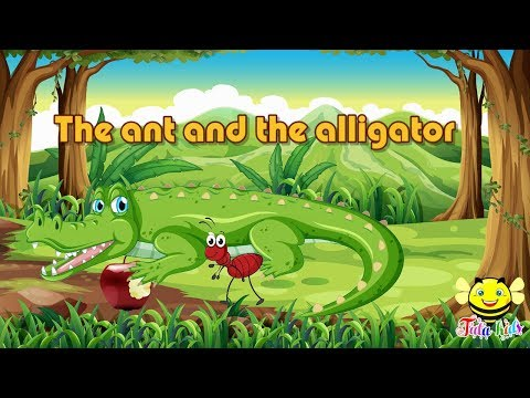 Abcs Stories -The Story Of Letter Aa - The Ant And The Alligator