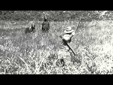 1926 Traditional Bow Hunt - Alaskan Grizzly - Arthur Young
