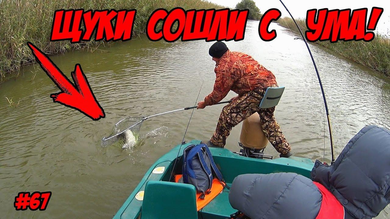 рыбалка на толстолобика в краснодарском крае видео