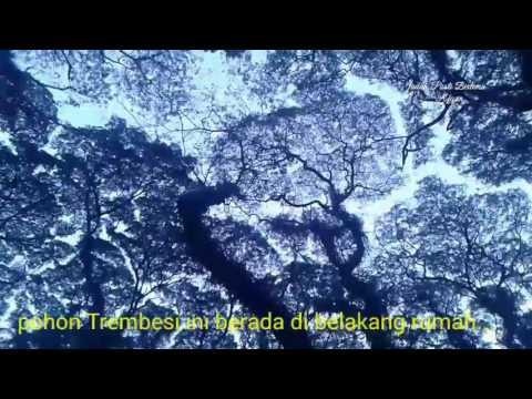 Geng Ambyar dolan ke Jawa Timur part 2