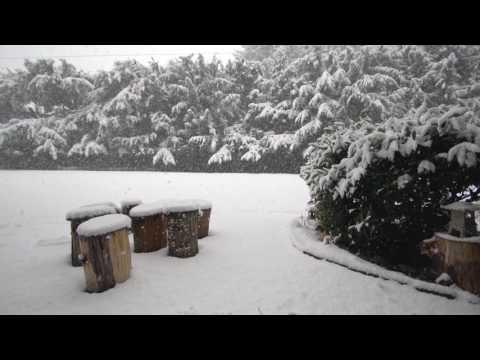 2017 Snowstorm in Redmond WA