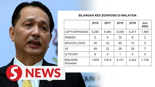 Malaysia records 2,649 cases related to zoonosis as of June