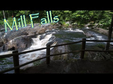 Mill Falls & Beech Grove Hiking Trails. Kejimkujik National Park, Nova Scotia.