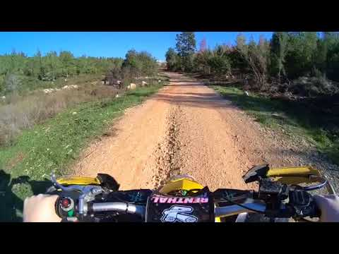 Atv in forest neve ilan