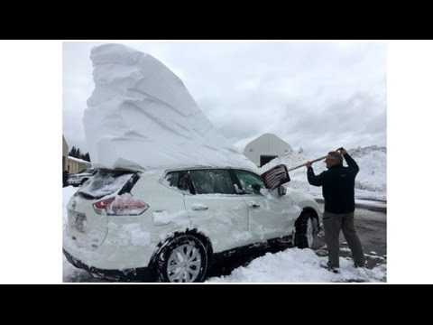 Earth Will Not Warm Again Until 2100, Record Snow Canada, Ferry Trapped in Sea Ice (343)