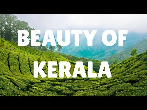 KERALA - The Beauty of Nature