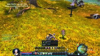 AION GAMEPLAY WINDOWS 8 FPS TEST