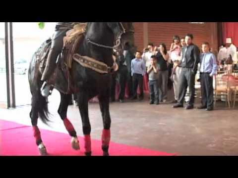 Horse Show Show De Caballos Para Una Quincea 241 Era Youtube