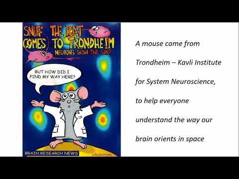 Brain Awareness Week   Ioannina, GREECE   2017