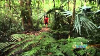 Holiday travel video guide for Brisbane, Queensland Australia