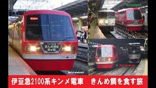 伊豆急2100系キンメ電車 きんめ鯛を食す旅