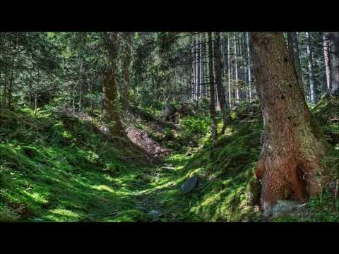 Beethoven - Serenade for flute, violin & viola in D major, Op. 25