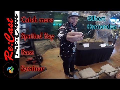 Newport Spotted Bay Bass Seminar at Bass Pro Shops | ReCast Fishing SoCal