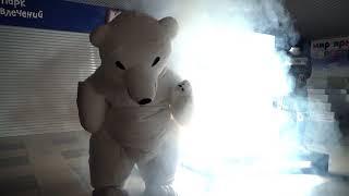 Медведь, который рвет танцполы. Это надо видеть своими глазами!!!
