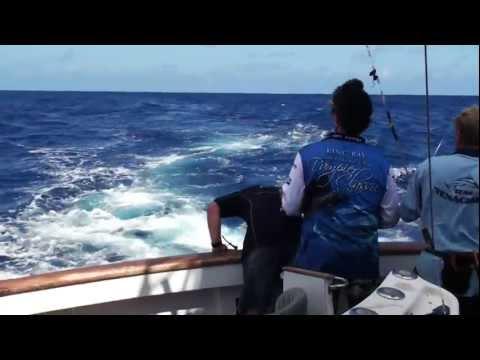 Grander Marlin 720P