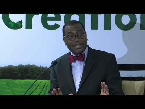 AM2017 - INDIA : Press Conference of the AfDB President