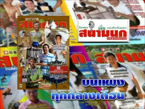 นิตยสาร เจาะสนามนก