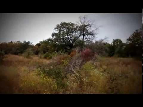 LAND For Sale Ben Wheeler, Texas