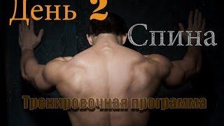 Как накачать спину? Тренировка спины. Натуральный бодибилдинг. Фитнес тренер(В это видео я покажу как накачать спину. Это один из вариантов тренировки на спину. Я подбираю упражнения..., 2015-07-22T19:39:37.000Z)