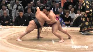 御嶽海 vs 千代鳳の取組。 2016大相撲春場所3日目。