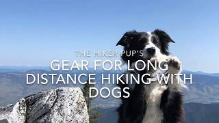 Long Distance Hiking with Dogs Gear Set up