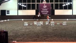 Global Dressage Forum 2012 - Ingrid Kilmke